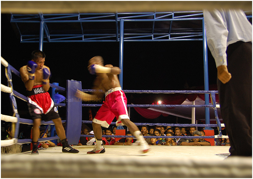 Boxing Camp Kota Malang (4/6)